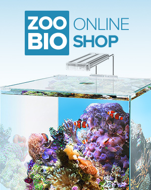 Boutique d'aquariophilie